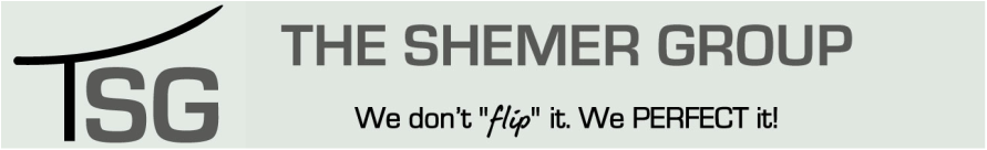 The Shemer Group Logo